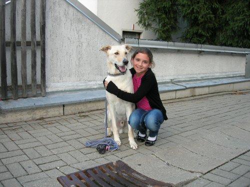 Linda's Hund Sam